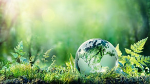 Forms Automation Software: Go Green with a Paperless Office