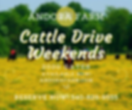 2020 Cattle Drives dates announcement.pn