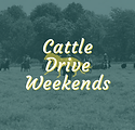 SIMPLE Cattle Drives 2020.png