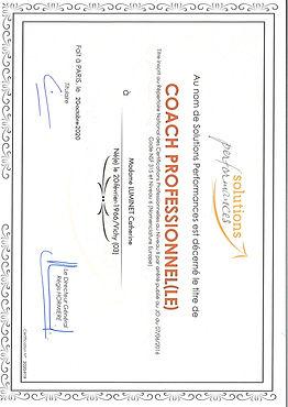 titre CRNCP Coach Professionnelle Catherine Luminet