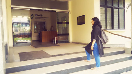 Hitchhiker's guide to surviving a year at IBAB