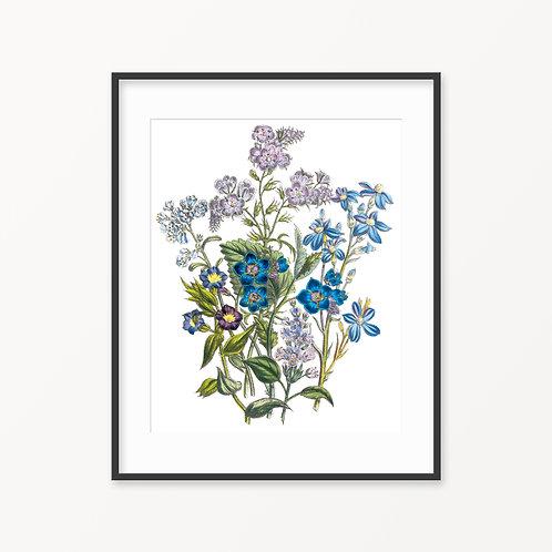 Vintage Botanical Print - 90