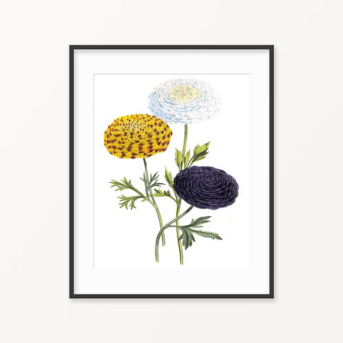 Vintage Botanical Print - 105