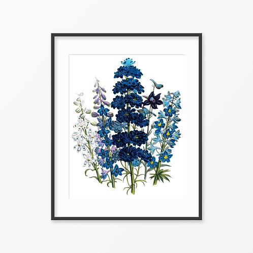 Vintage Botanical Print - 108