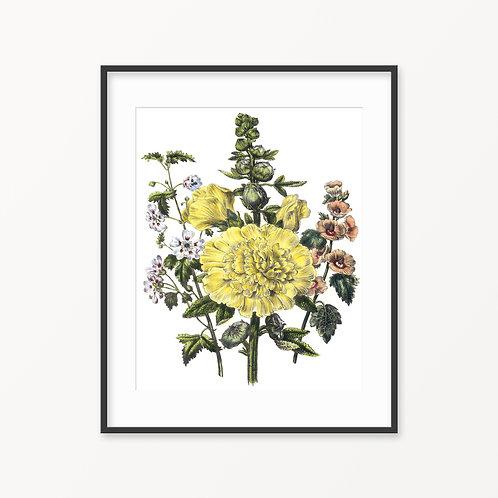 Vintage Botanical Print - 128