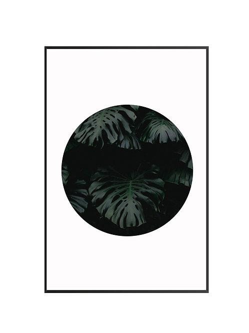 Dark Leaves M32
