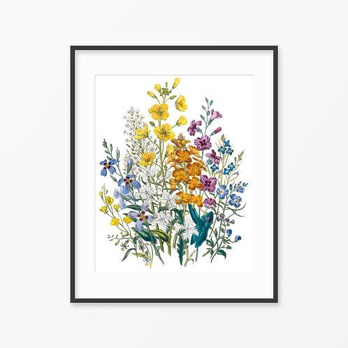 Vintage Botanical Print - 67