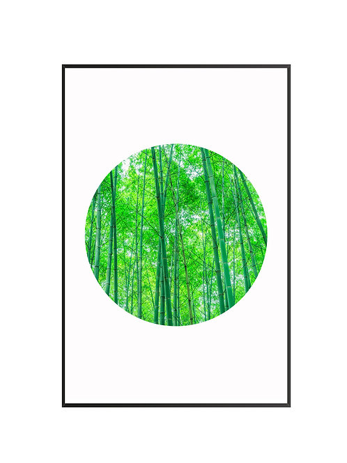 Green Forest Circle Print M9
