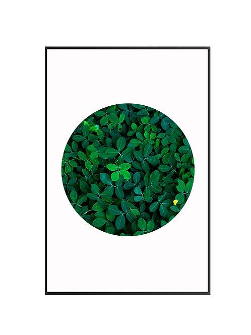 Green Leaves Circle Print M6