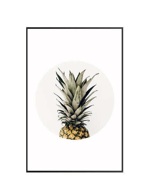 Pineapple Circle Print M7