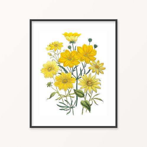 Vintage Botanical Print - 148
