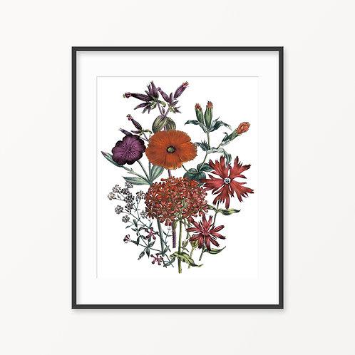 Vintage Botanical Print - 126