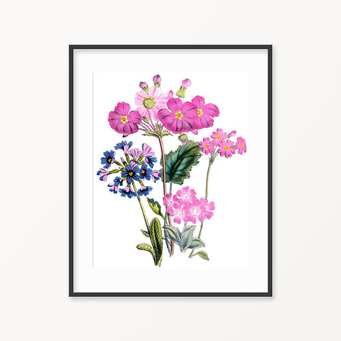Vintage Botanical Print - 190