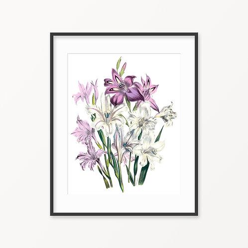 Vintage Botanical Print - 11