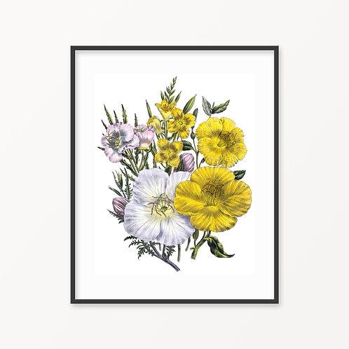 Vintage Botanical Print - 139
