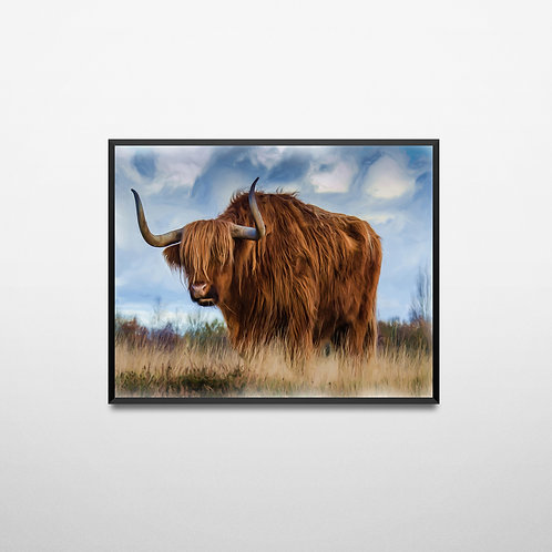 Highland Cattle Oil Painting Poster
