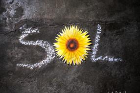 SOL - plateslepp med Sarah Camille & band