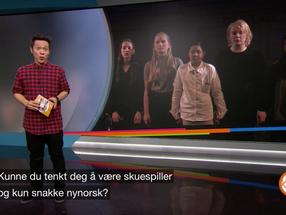 NRK Supernytt: Bergmannen