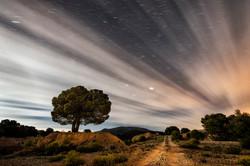 Noche andaluza