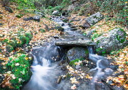 Agua de alta montaña