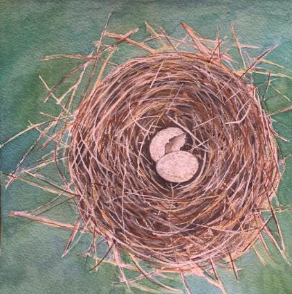 Tennessee Nest