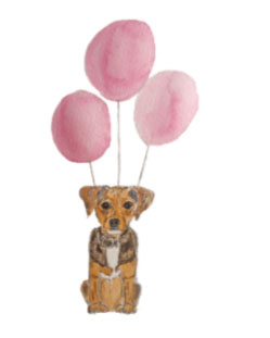 Dog with balloons 2