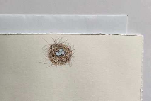 Nest Stationery Set