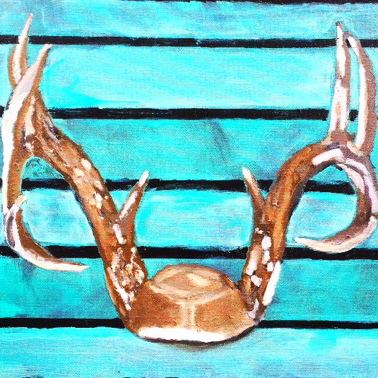 """""""Driftwood Antlers"""""""
