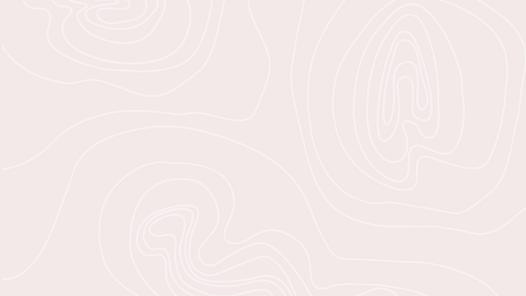 Fond_Topo_Rose