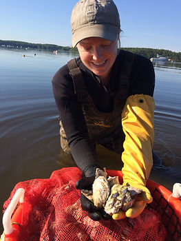 Contact, Laura Ward Brown, owner/operator Fox Point Oysters