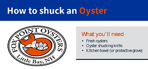 Fox Point Oysters Shucking Guide