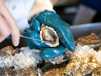 Learn to shuck an oyster