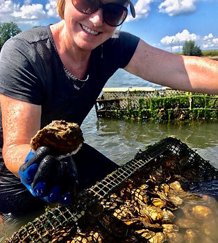 oyster farm tour, farming oysters, aquaculturepick your own oysters, NH