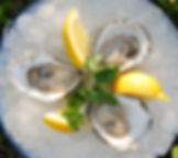 oysters.ice.jpeg
