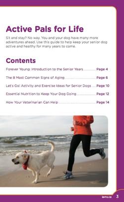 Iams Senior Dog Guide
