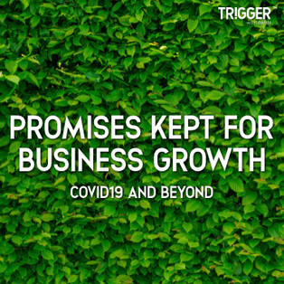 One of the most powerful tools that we have as a species is language. What we often overlook is that Words have tremendous Power apart from Meanings.   Click the link below to find out how Promises Kept enables Business Growth in a Pandemic.