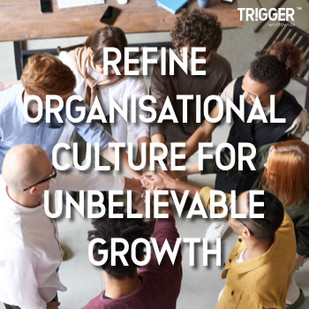 In the current economic environment how much is your organisations culture (its Beliefs, Traditions, Behavioural norms, Processes & Systems) hindering your organisation from achieving its full potential?  Want to know how you can help your organisation break free from Culture Traps and achieve its Business Growth Agenda.