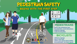 2014 Ped Safety - 1third ad Ver3
