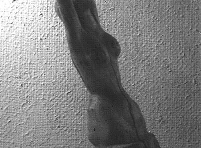 Naissance Venus colpri.JPG