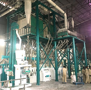 Mealie Meal Machine For South Africa (1)