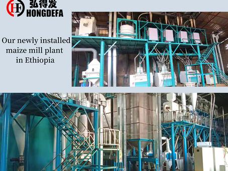 Hongdefa 100t/24h maize mill machine in Ethiopia