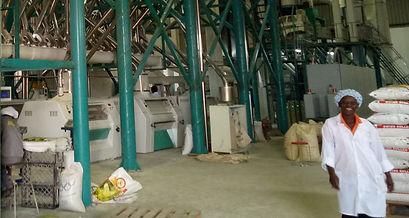 maize mill machine (9).jpg