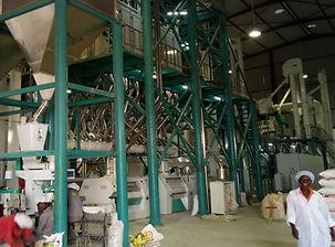 240t maize mill plant (2).jpg