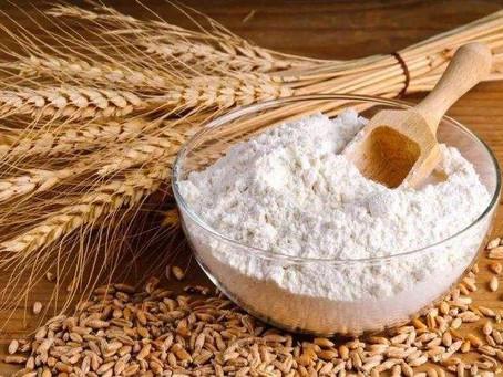 Mesures efficaces pour prévenir les parasites de la farine dans une usine de minoterie