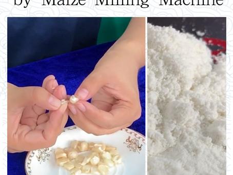 Dans le traitement de la farine de maïs, nous utilisons un dégerminateur pour obtenir la farine de m