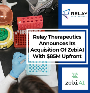 Relay Therapeutics Announces Its Acquisition Of ZebiAI With $85M Upfront