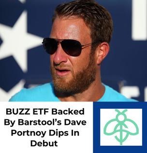 Social Media Tracking ETF Backed  By Barstool's Portnoy Dips In Debut