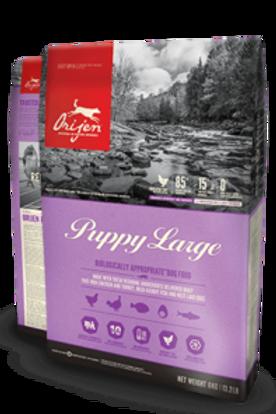 Orijen Puppy Large Breed Grain Free 340G