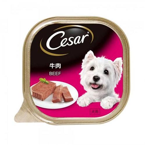 Cesar Beef 100G (Minimum Order of 4 Packs)
