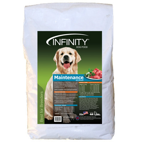 Infinity Maintenance Adult 20KG (ONE day advance ordering)